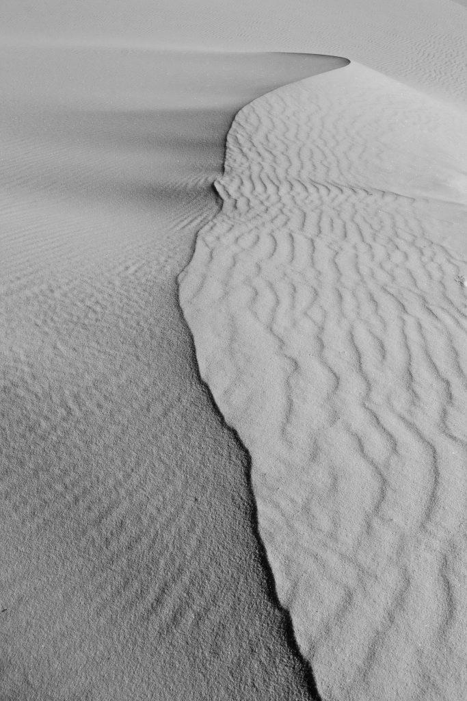 Čiernobiela fotografia (11)