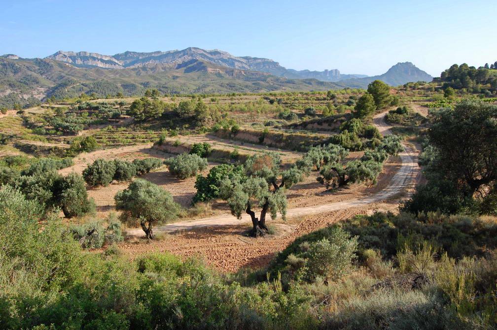 Andaluzia (6)