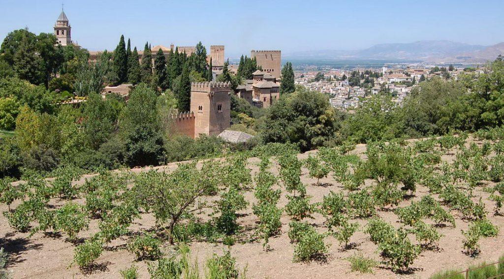 Andaluzia - Alhambra (24)