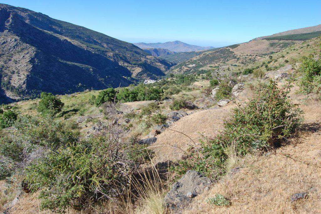 Andaluzia - Mulhacen (4)