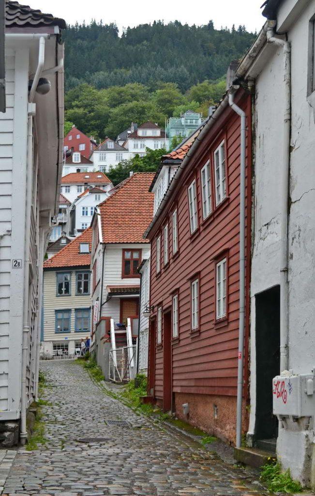 Bergen (14)
