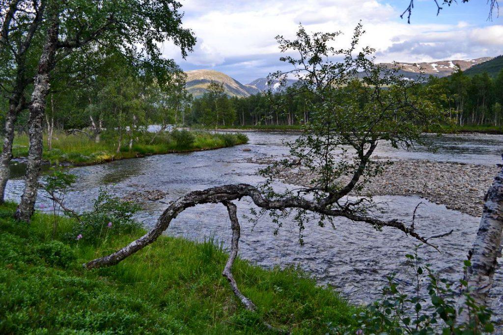 Norsko (4)