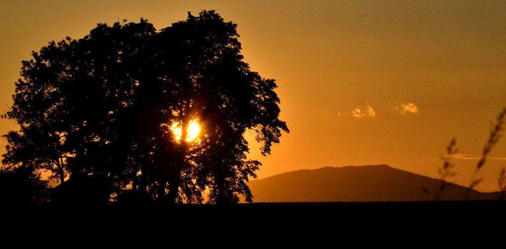 Podvečerné slnko (10)