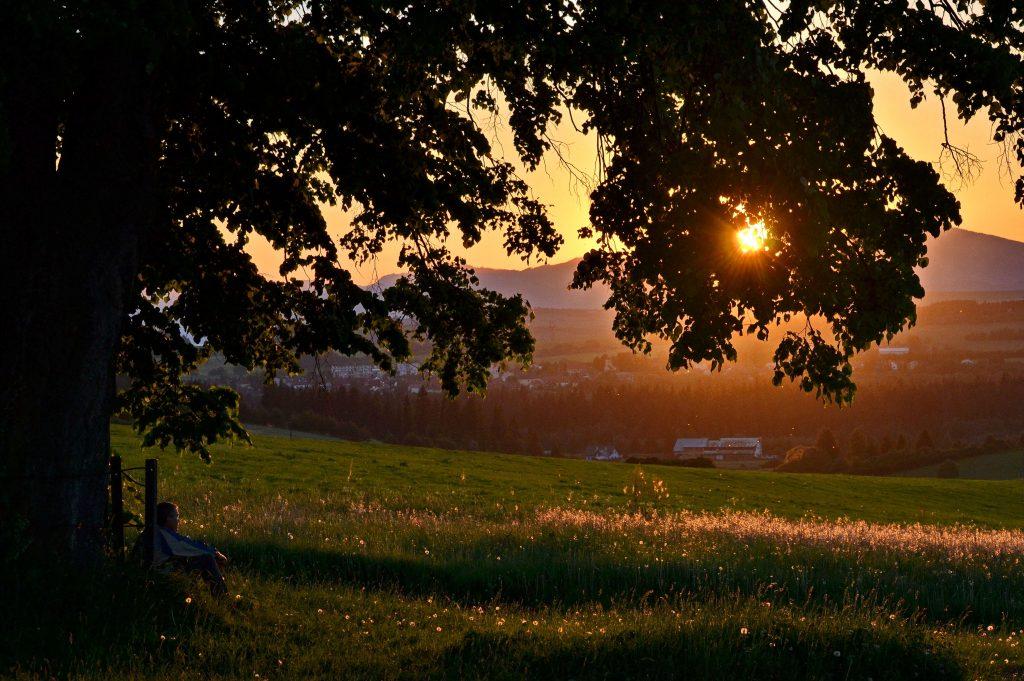 Podvečerné slnko (9)