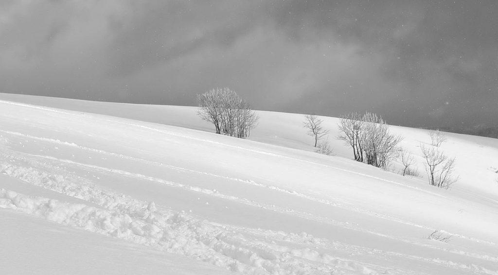 Čiernobiela zima (2)