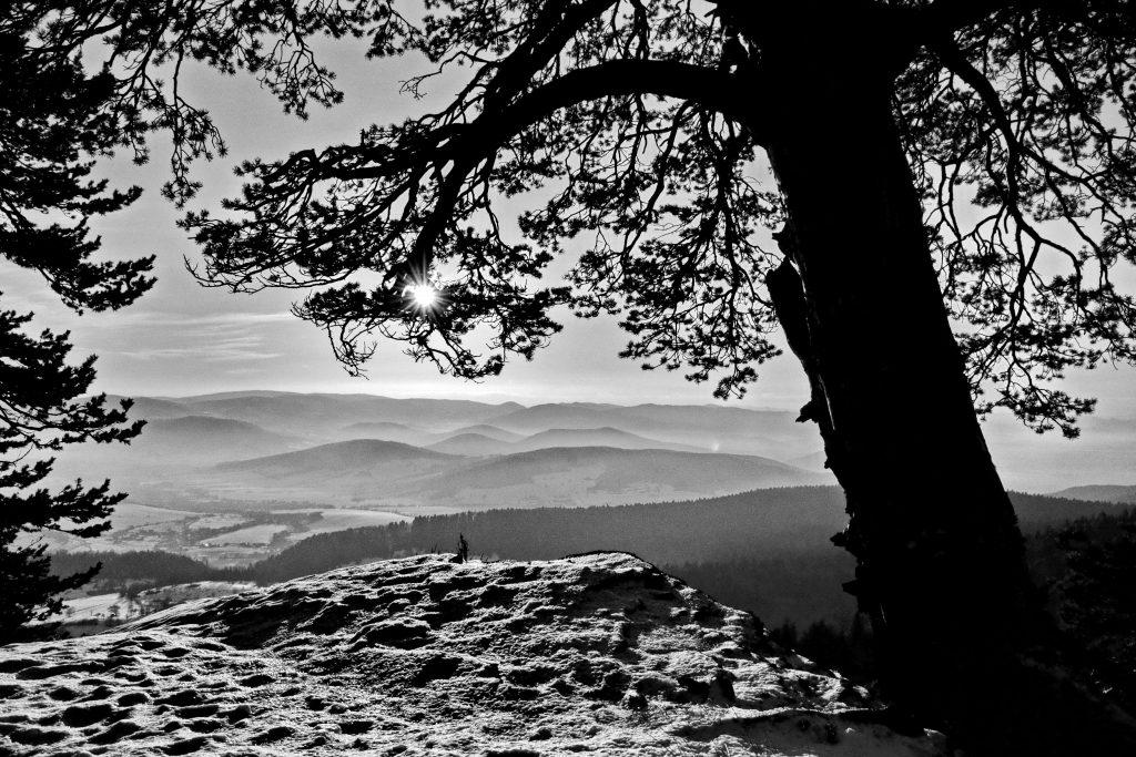 Čiernobiela zima (5)