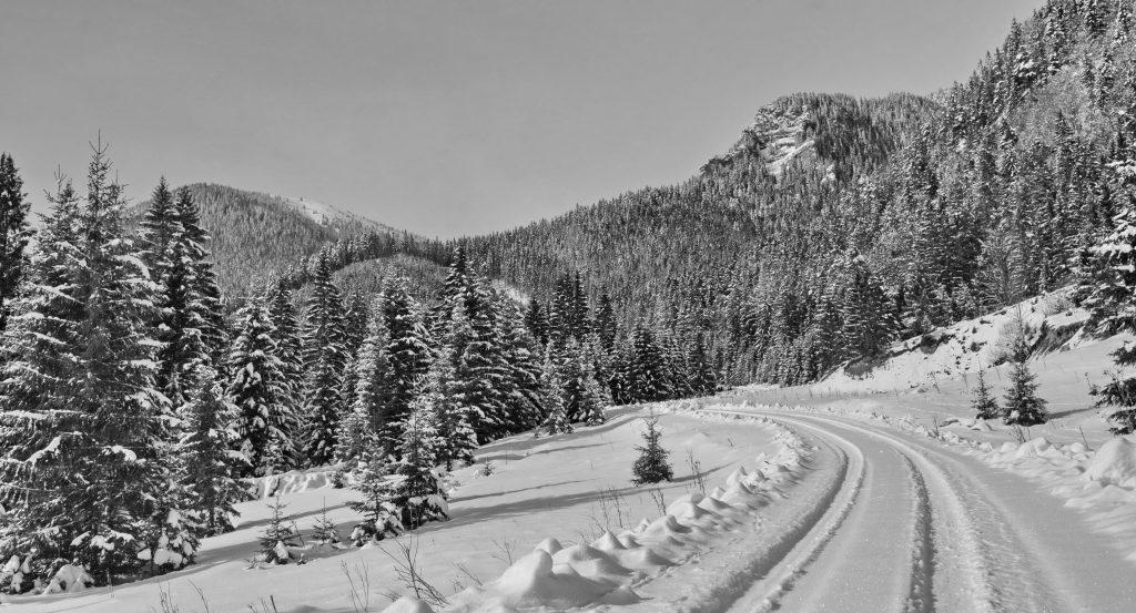 Čiernobiela zima (7)