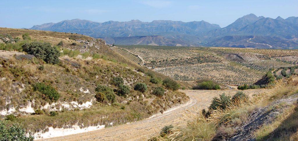 Španielskom k Picos de Europa (1)