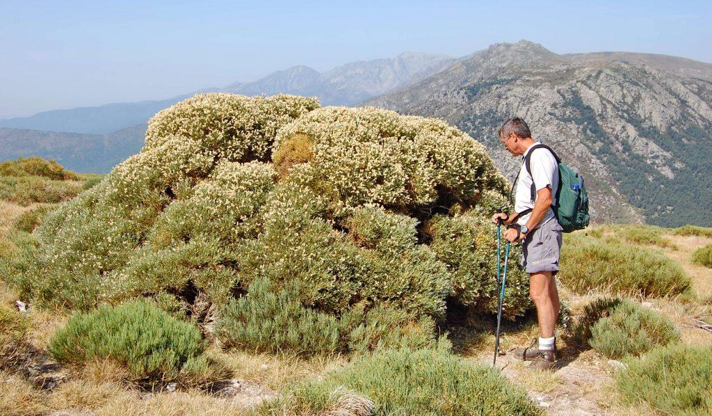 Španielskom k Picos de Europa (12)