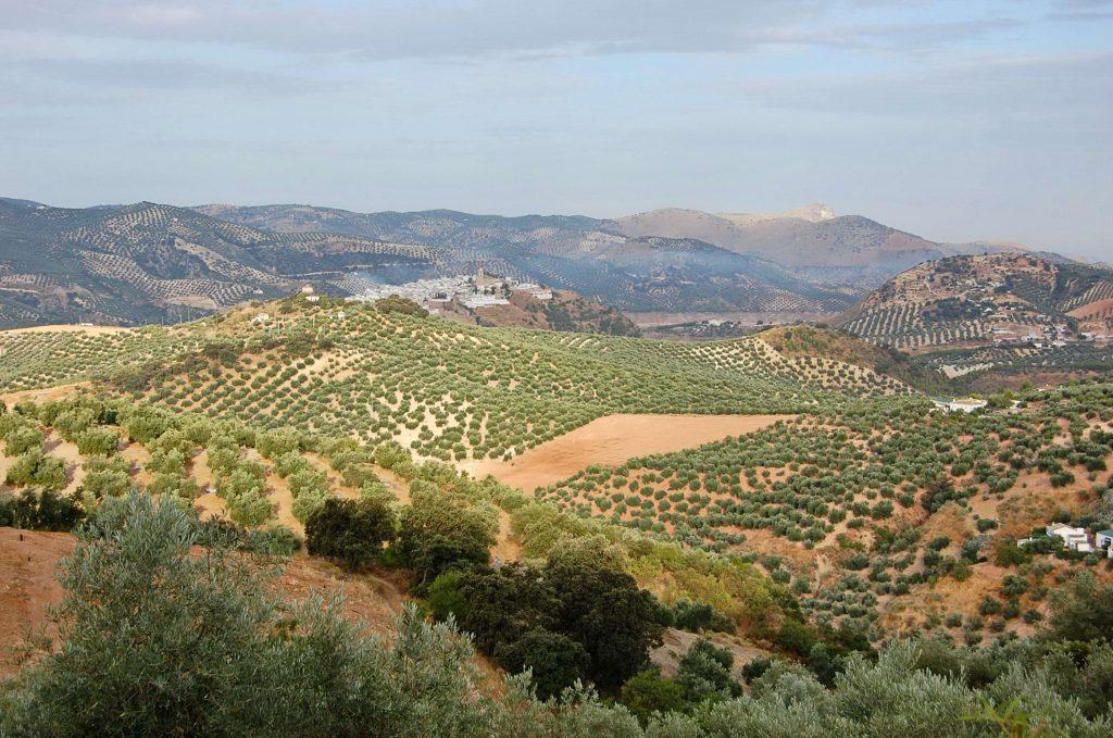 Španielskom k Picos de Europa (3)