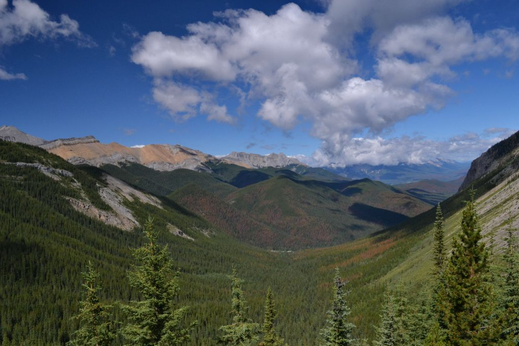 Národný park Jasper 5