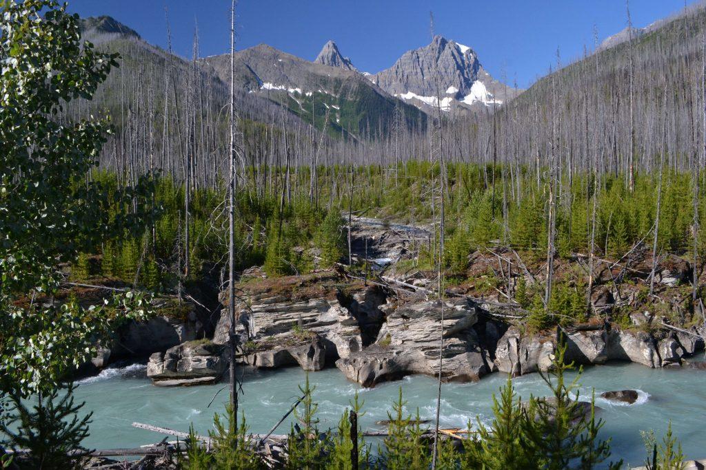 Národný park Jasper 50