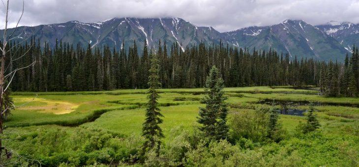 Na sever k Aljaške