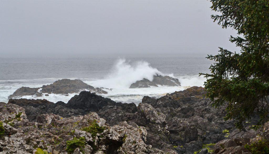 Pobrežie. Práve začínal príliv, nad ostrými skaliskami sa začali trieštiť vlny