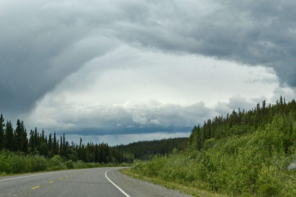 A stále ďalej na sever zalesnenou planinou plnou močarísk a krátkych štíhlych severských smrekov