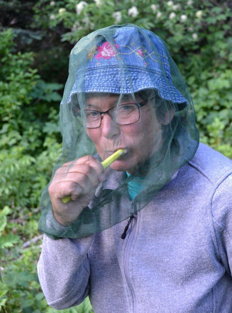 Roje komárov a drobných mušiek nám občas znepríjemňovali táborisko, ale nebolo to až tak hrozné, ako som o tom čítala v iných cestopisoch