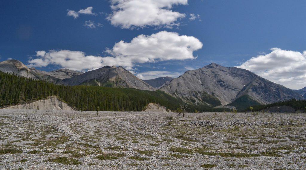 Mineral Lick Naplaveniny z hôr zrejme plné minerálov.