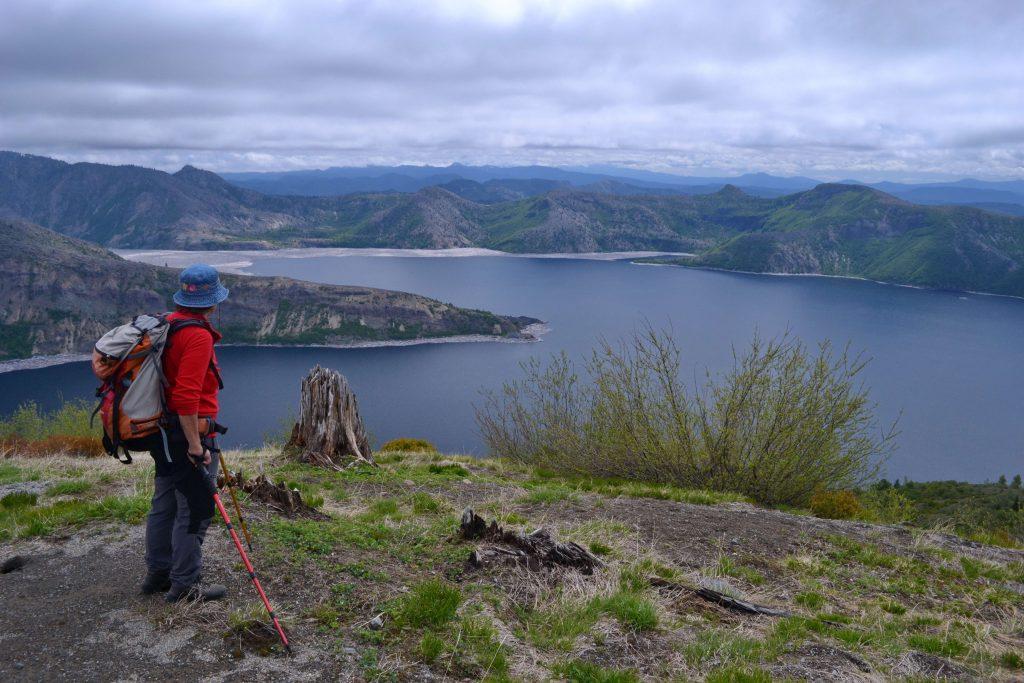 Spirit Lake. Po okrajoch jazera stále plávajú vybielené kmene pováľaných stromov